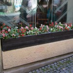 Begonias are one flower that fill Prague window boxes. (photo by Leah Heiser)